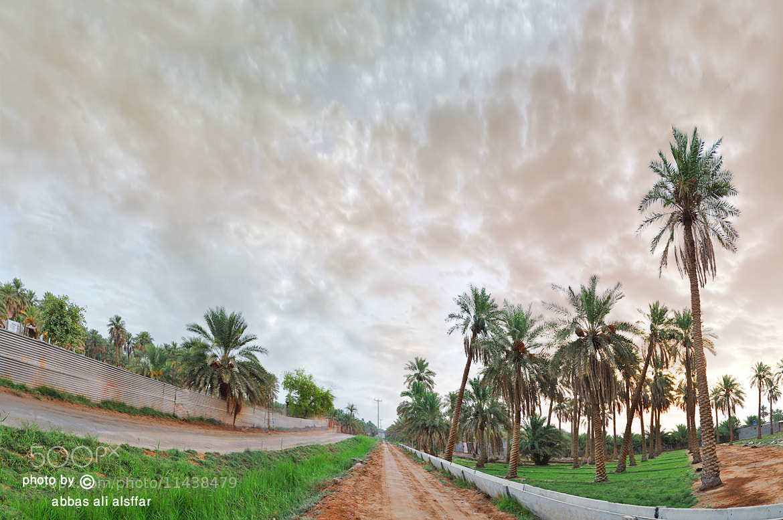 Photograph img by abbas alsffar on 500px