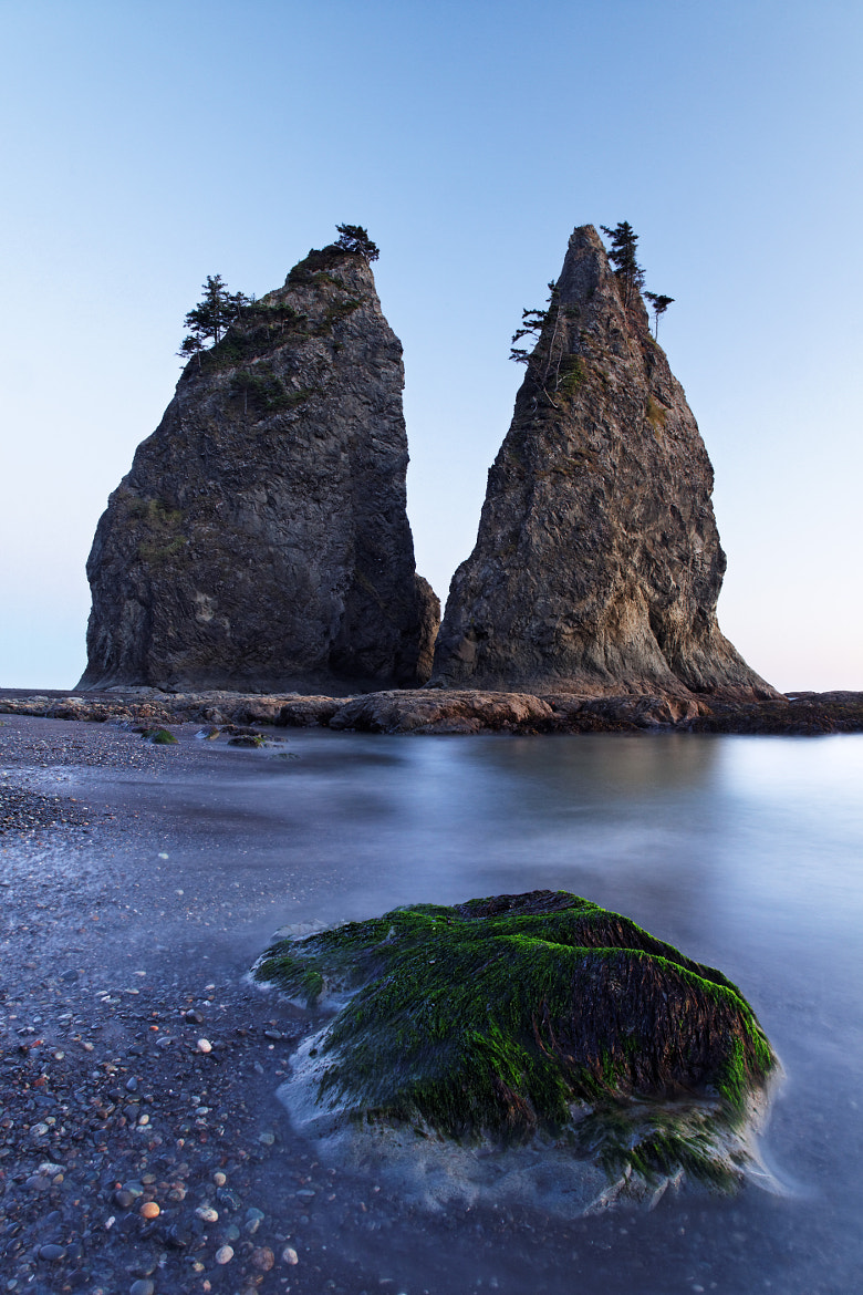 Photograph Sea stack and algae covered rock at dusk, Rialto Beach, Olympic National Park, Washington State, USA by Brad Mitchell on 500px