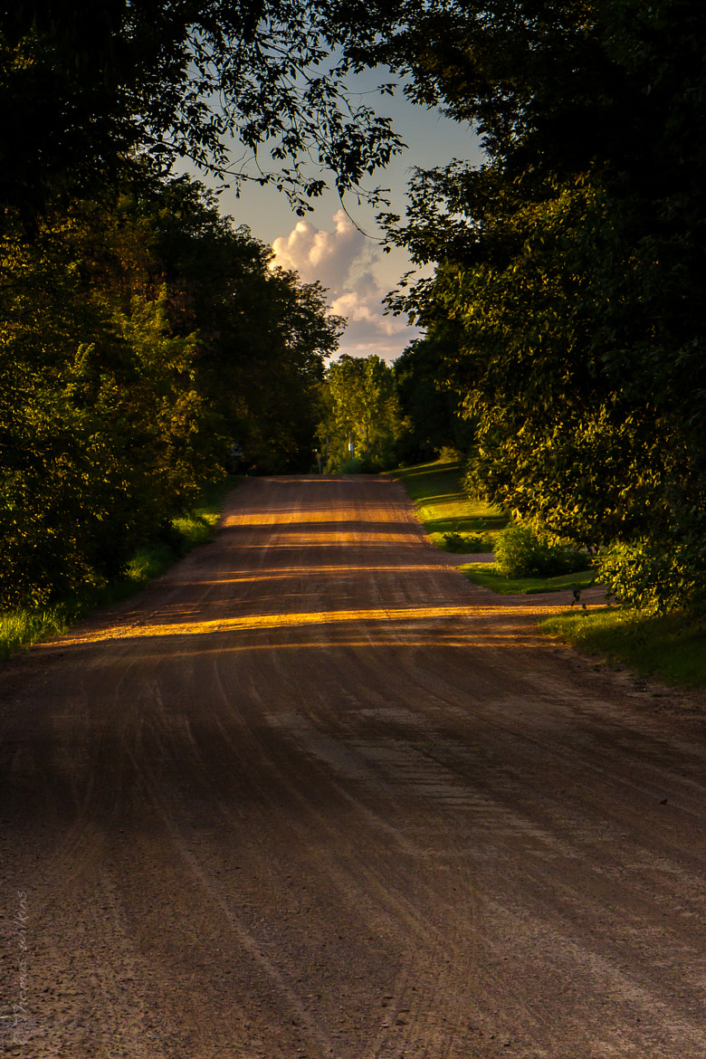 Photograph Car wheels on a gravel road by Tom Wilkins on 500px