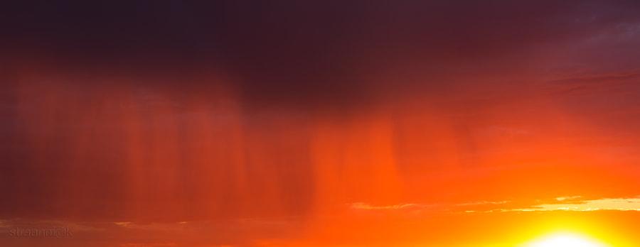 Magic rain at the sunset by Oleg Ivanov on 500px.com