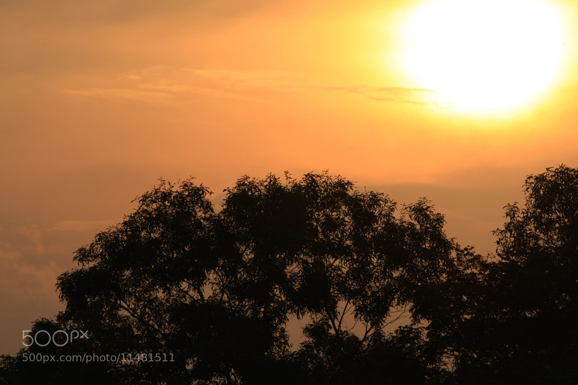 Photograph Sunset by GengHui Tan on 500px