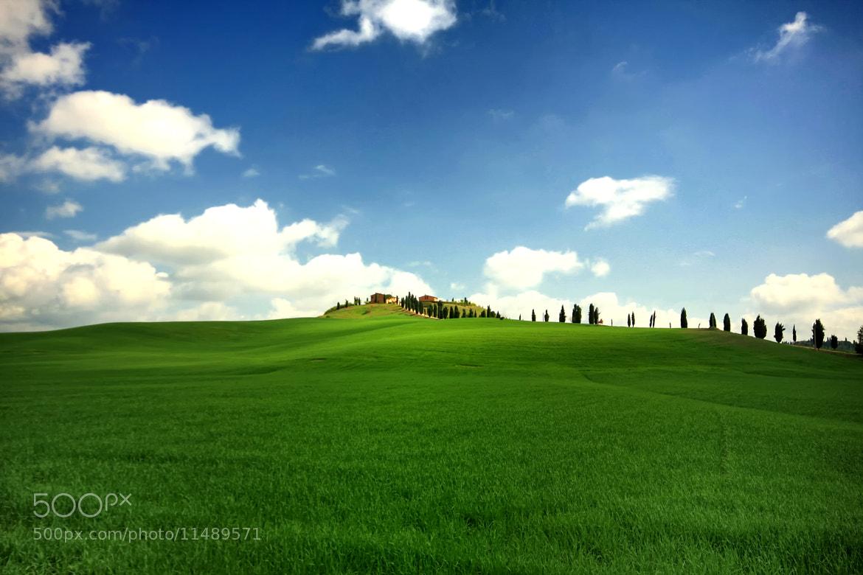 Photograph Windows XP by Danik Charsky on 500px