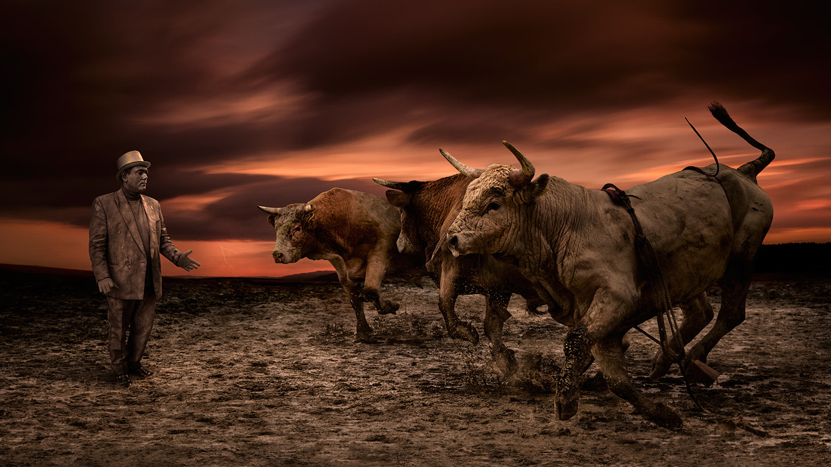 Photograph Contro Toristo by Peter Majkut on 500px