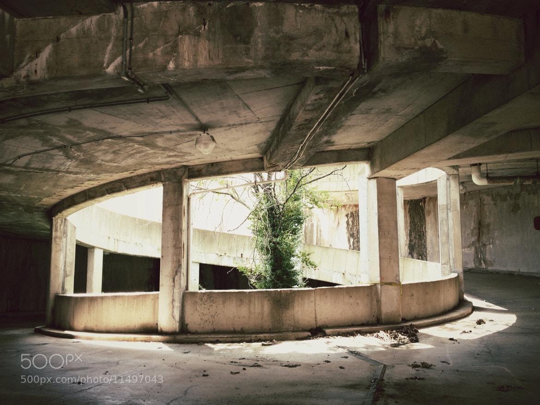 Photograph Downward by John Dedeke on 500px