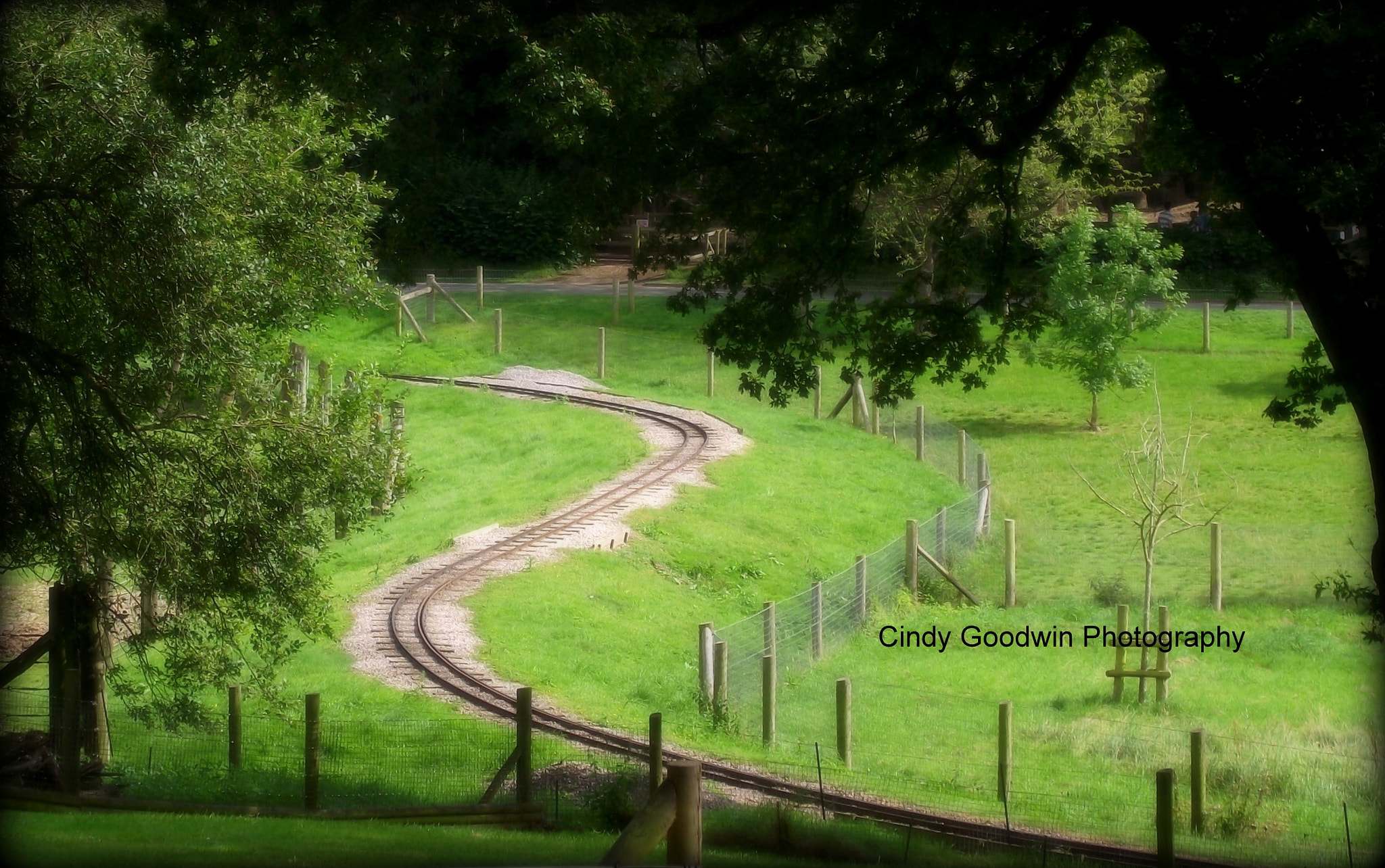 Photograph The Track by Cindy Goodwin on 500px