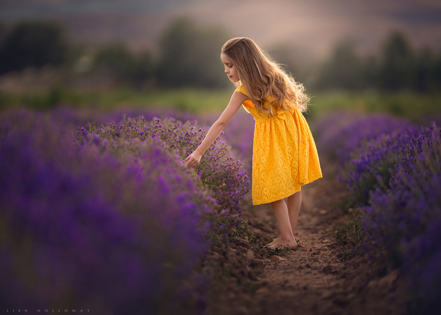 Photograph Tranquility by Lisa Holloway on 500px