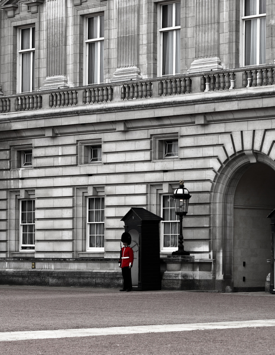 Photograph The guard by Leigh  Bloomfield on 500px