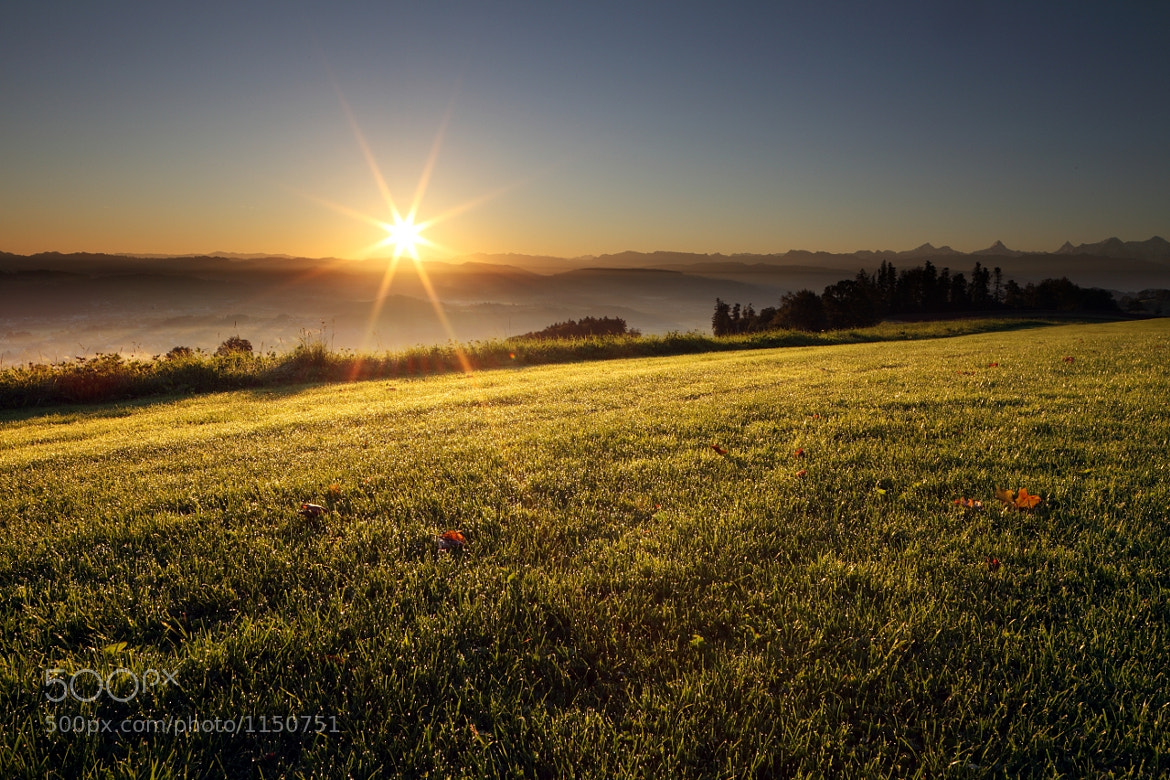 Photograph Sunrise on Gurten by Thomas Rawyler on 500px