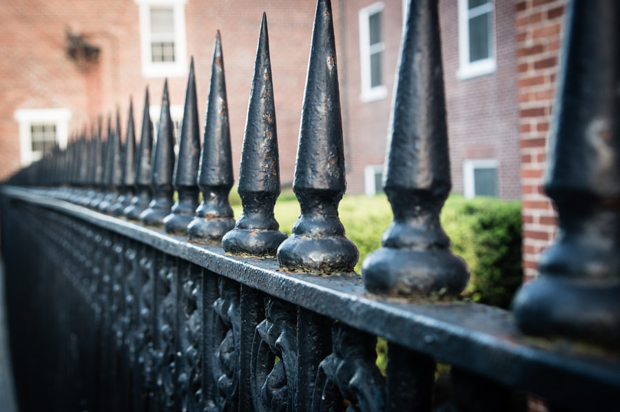 Coneheads by Andy Roth on 500px.com