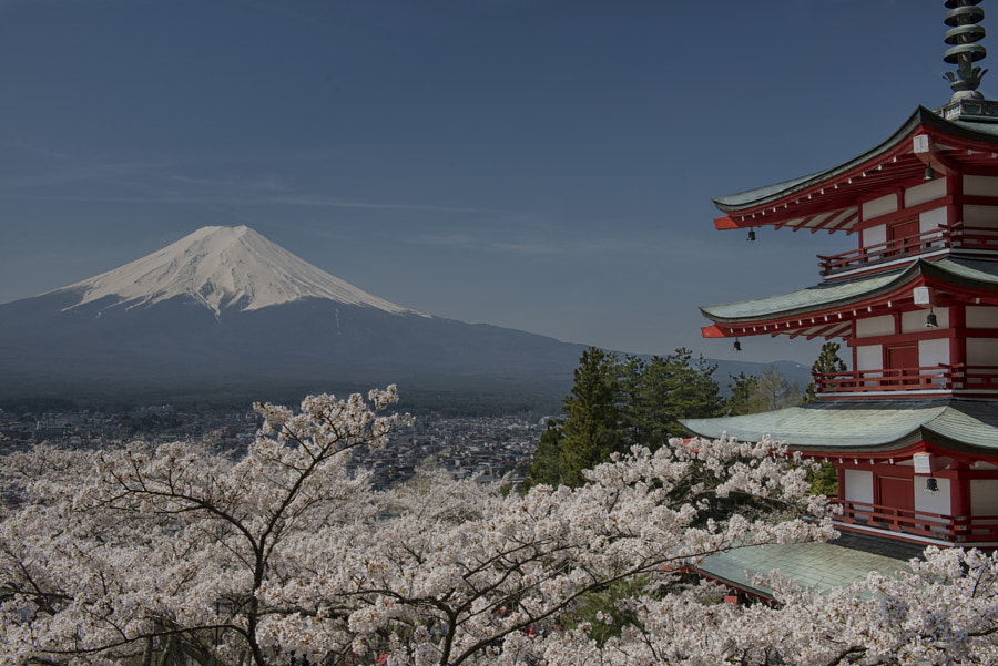 Fuji and Pagoda by Hugh Dornan on 500px.com