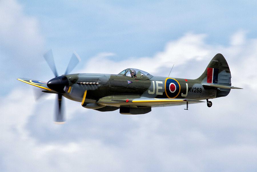 Spitfire XIV