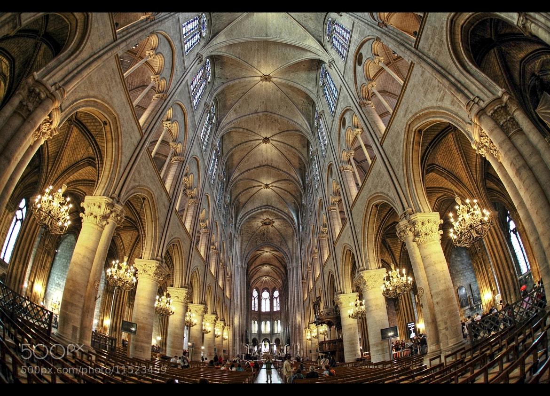 Photograph *Cathédrale Notre-Dame de Paris* by erhan sasmaz on 500px