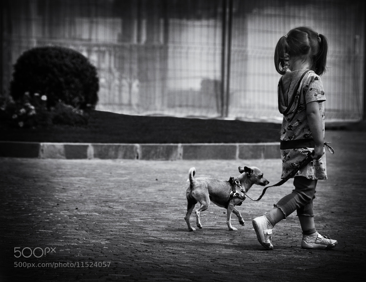 Photograph  walk with a friend by Silena  Lambertini on 500px