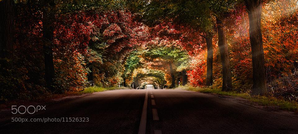 Photograph Colourful way by Marek Czaja on 500px