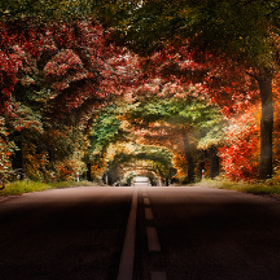 Colourful way by Marek Czaja (MarekCzaja)) on 500px.com