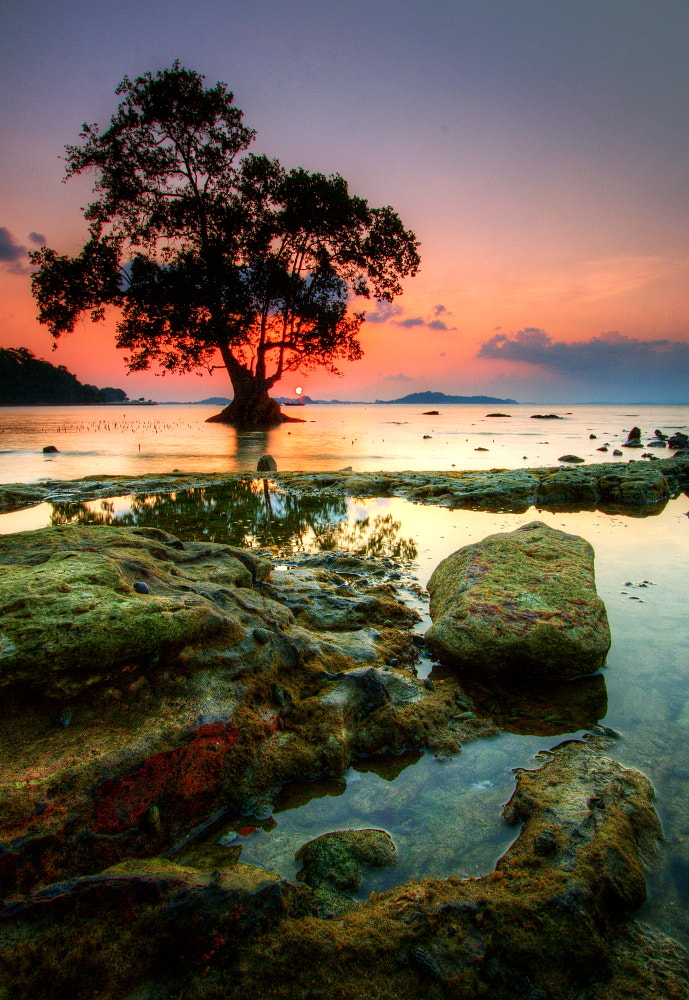 Photograph ALONE AGAINST ALL ODDS by James Duta Aribawana on 500px