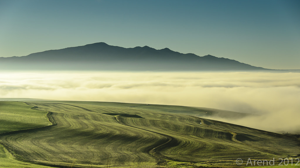 Photograph Early morning mist by Arend van der Walt on 500px