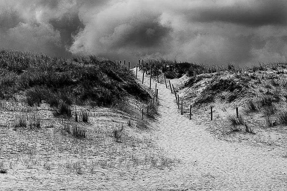 Photograph Dune by Ashley Beolens on 500px