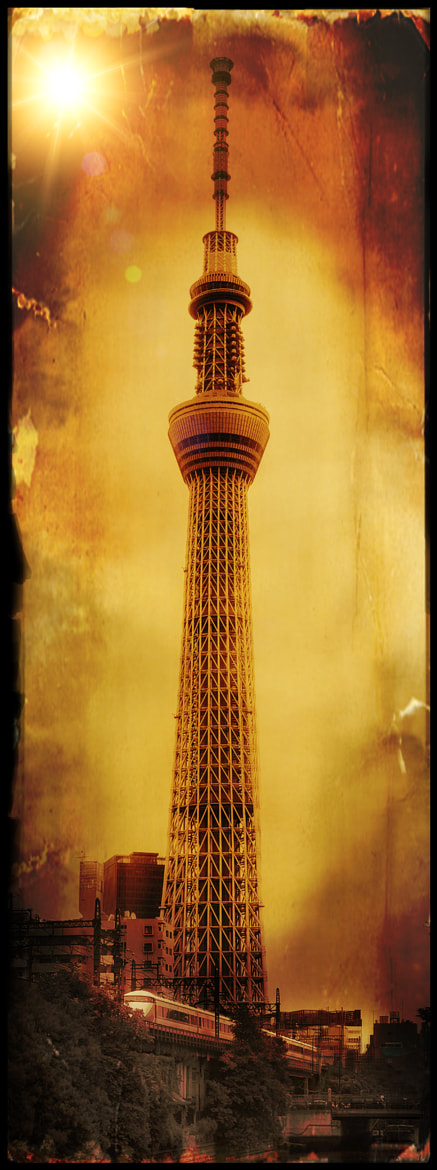 Photograph Tokyo Sky Tree by Maxime Cloutier on 500px
