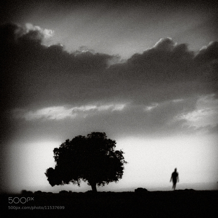 Photograph The Loneliness of the Long Distance Runner by Vladimir Perfanov on 500px