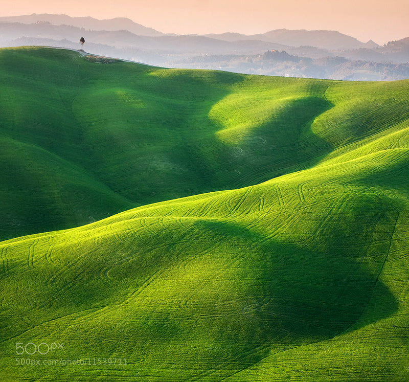 Photograph Single by Marcin Sobas on 500px