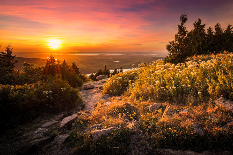 Cadillac Mountain, Acadia National Park by Christoph Schöter on 500px.com