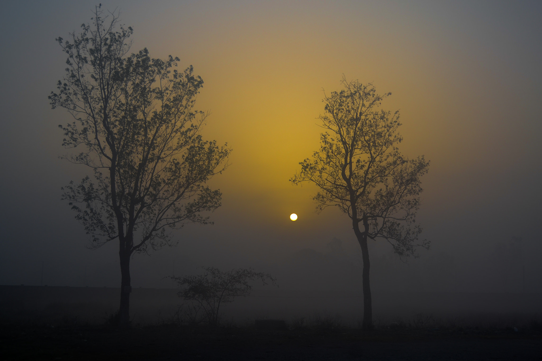 Photograph Untitled by Nischal Mishra on 500px