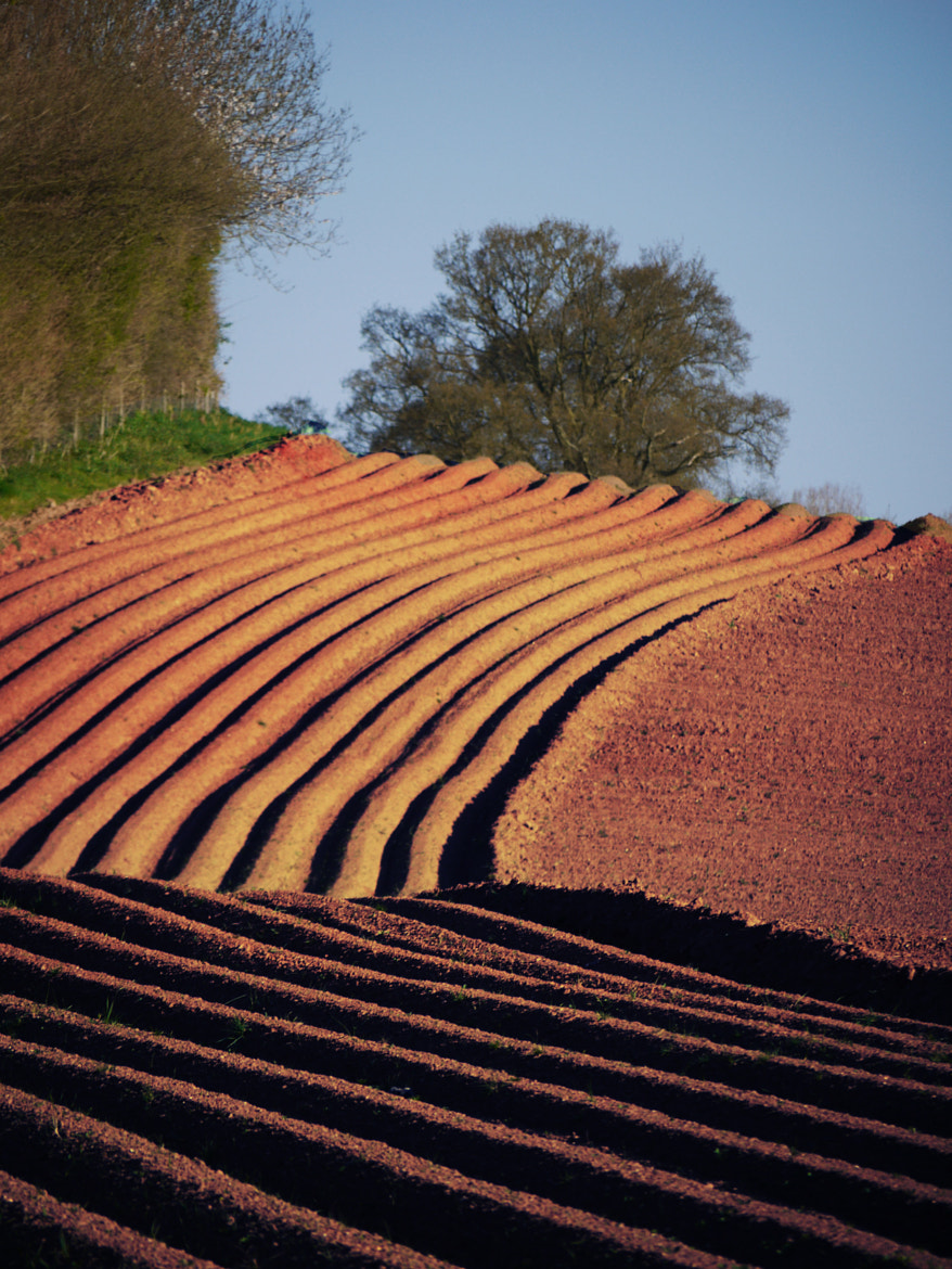 Photograph Ploughed by Paul Cresswell on 500px