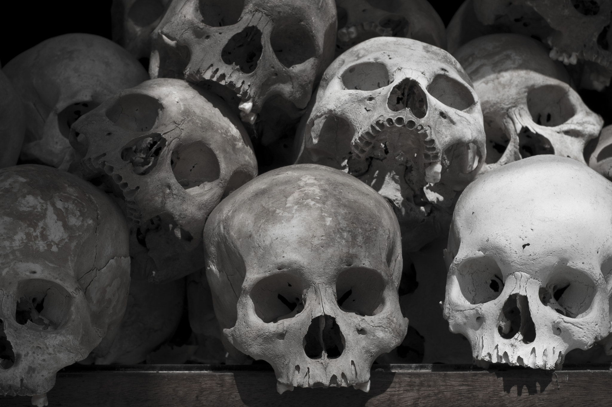 Photograph Skulls by kostas  gesoulis  on 500px