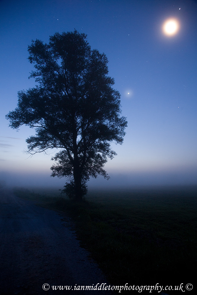 Photograph Moonlit dawn by Ian Middleton on 500px