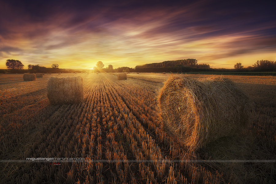 Mi Tierra by Miguel Angel Martín Campos on 500px.com