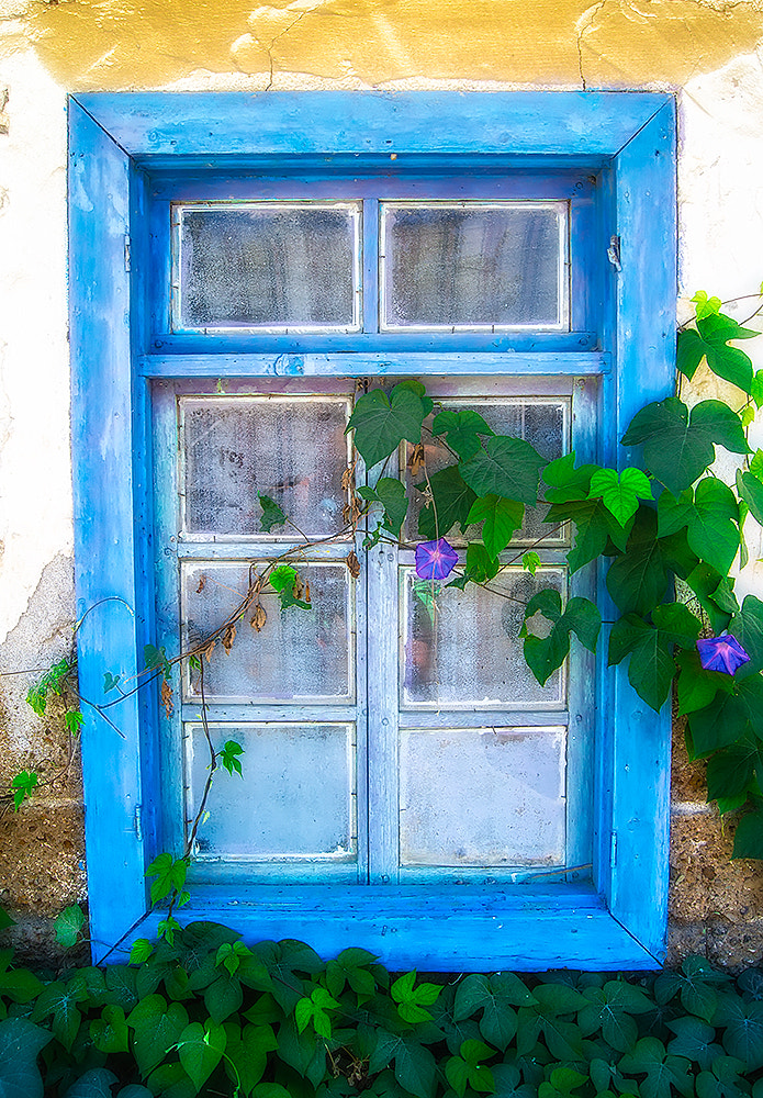 Photograph Blue Window by Neil Cherry on 500px