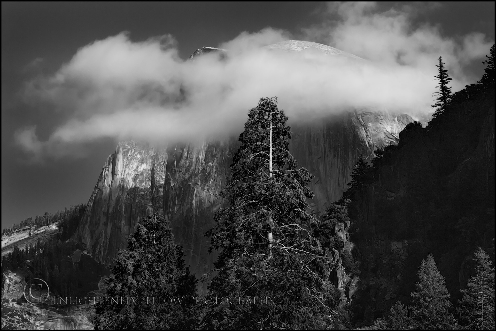 Photograph Halfdome, Cloud, and Trees by Enlightened Fellow on 500px
