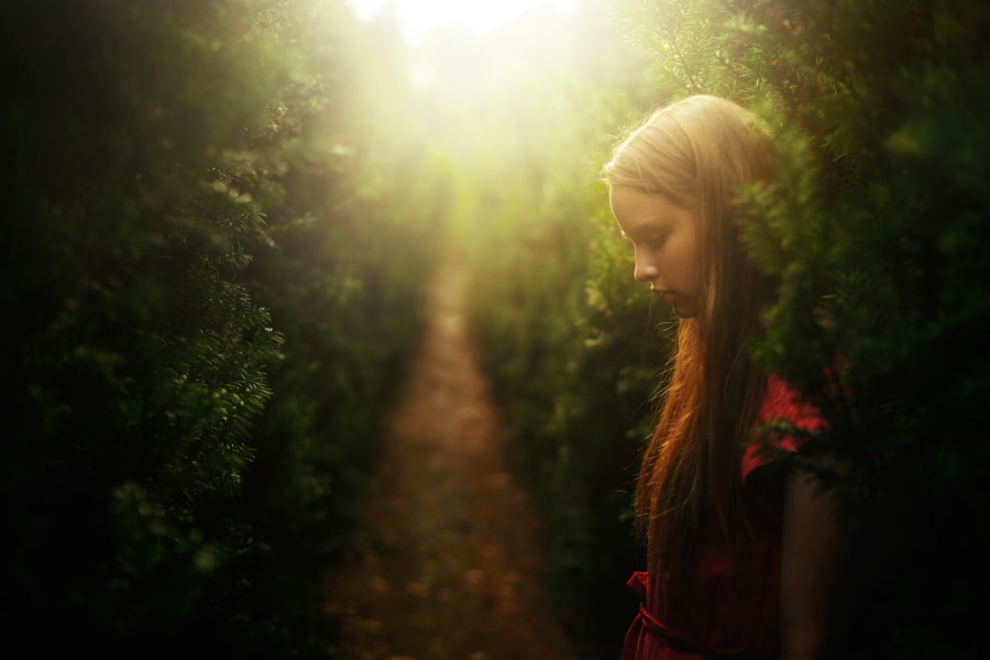 Dreams by TJ Drysdale on 500px.com