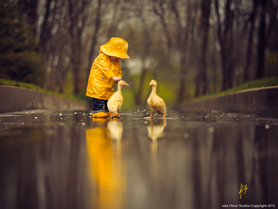 Fair Weather Friends by Jake Olson Studios on 500px.com