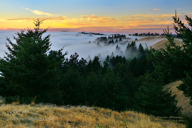 Photograph California Dreamscape  by Darvin Atkeson on 500px
