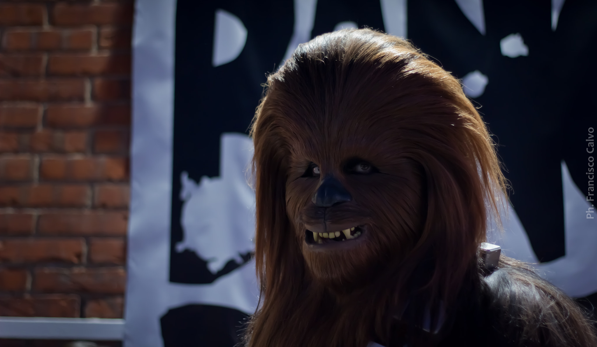 Photograph Chewbacca by Francisco Calvo on 500px