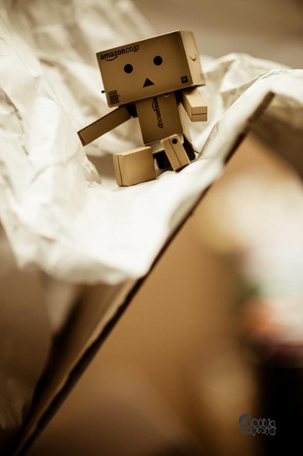 Paper World_2