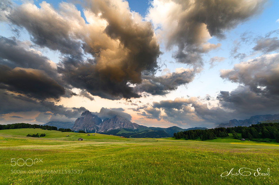 Photograph Dolomites - Seiser Alm by Anita Stizzoli on 500px