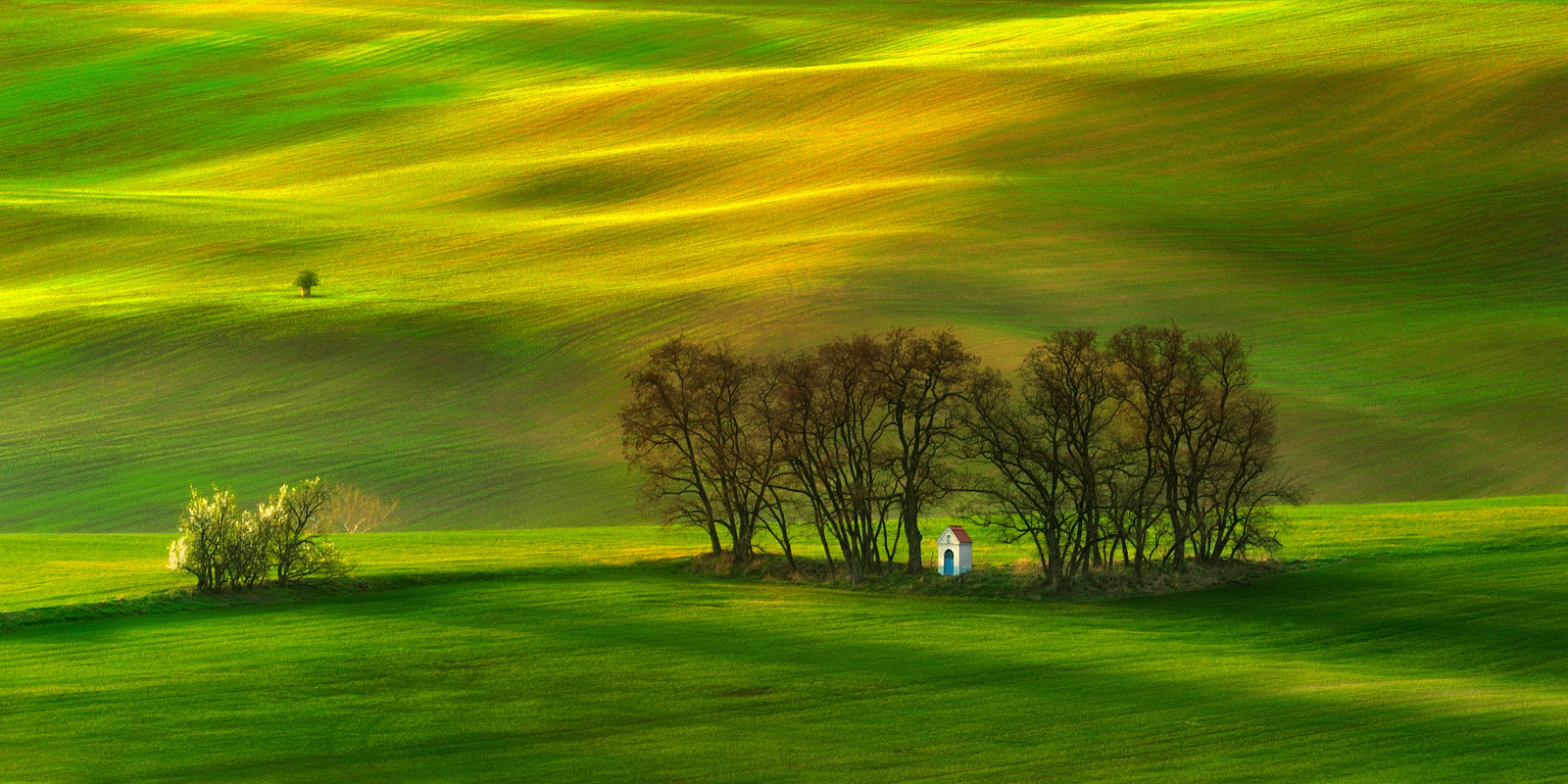 Photograph In the whole symbiosis... by Pawel Kucharski on 500px