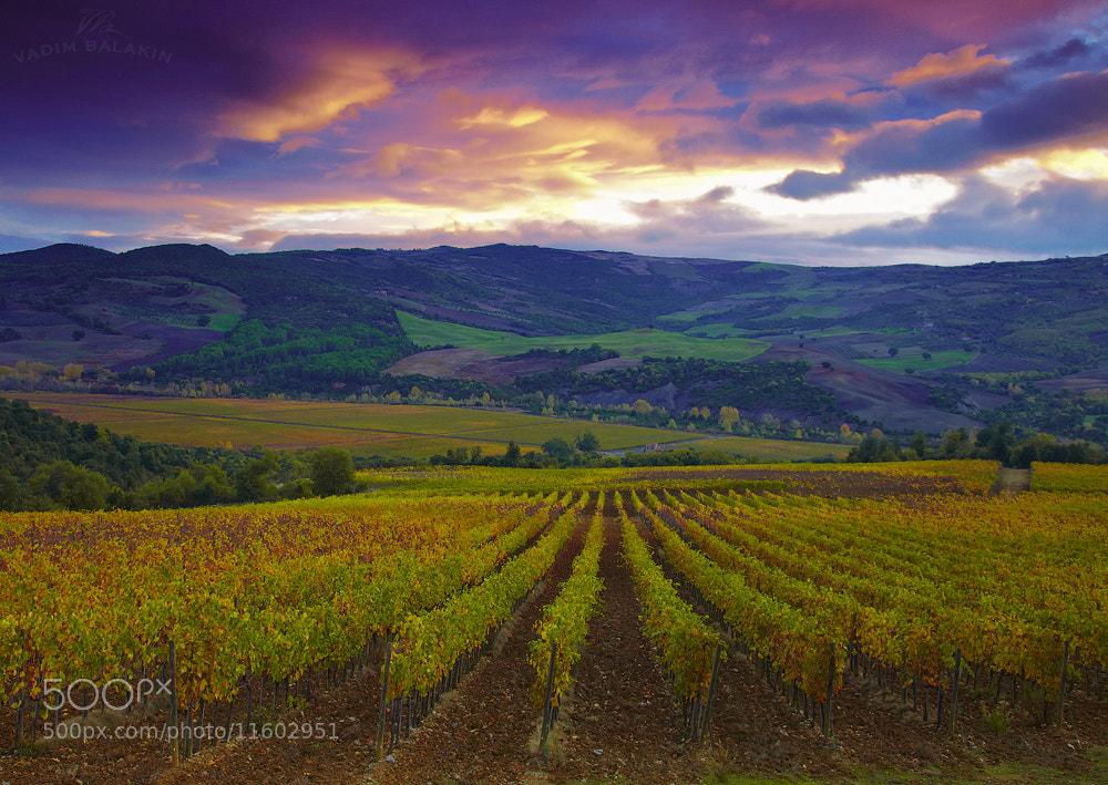 Photograph Tuscany sunrise (II) by Vadim Balakin on 500px
