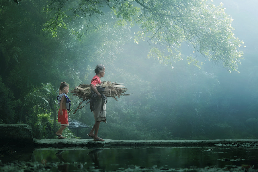 Photograph wood collectors by asit  on 500px
