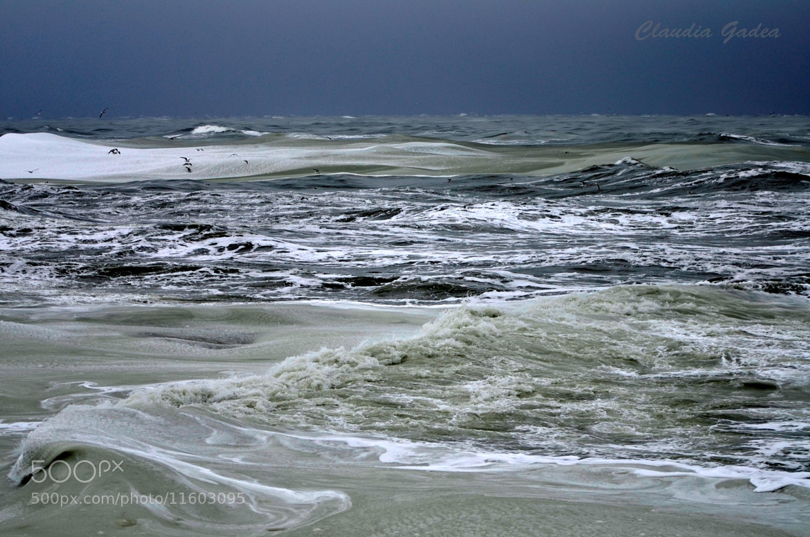 Photograph The angry sea by Claudia Gadea on 500px