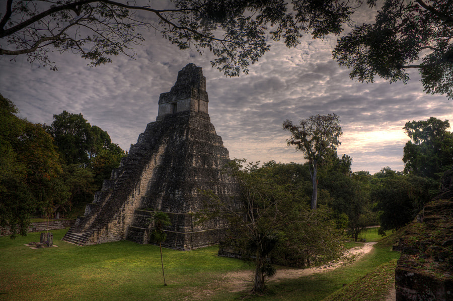 Photograph Tikal Guatemala by Wayne Harney on 500px