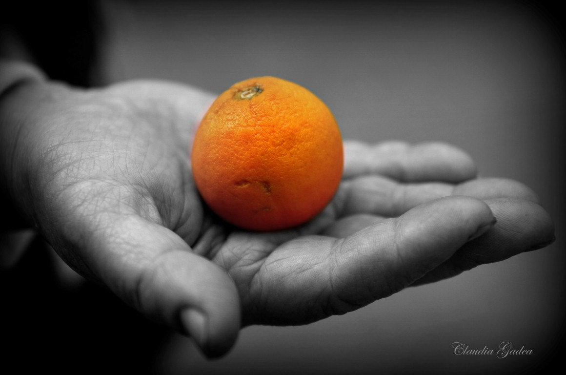 Photograph Precious Food by Claudia Gadea on 500px