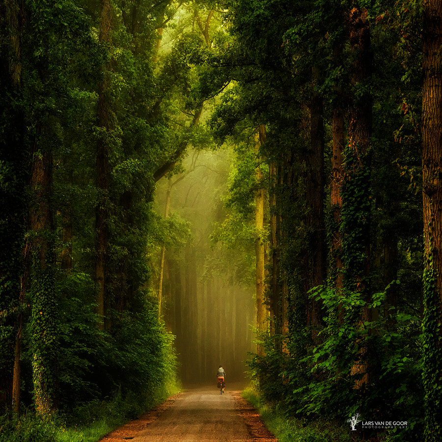 Exit the Portal by Lars van de Goor on 500px.com