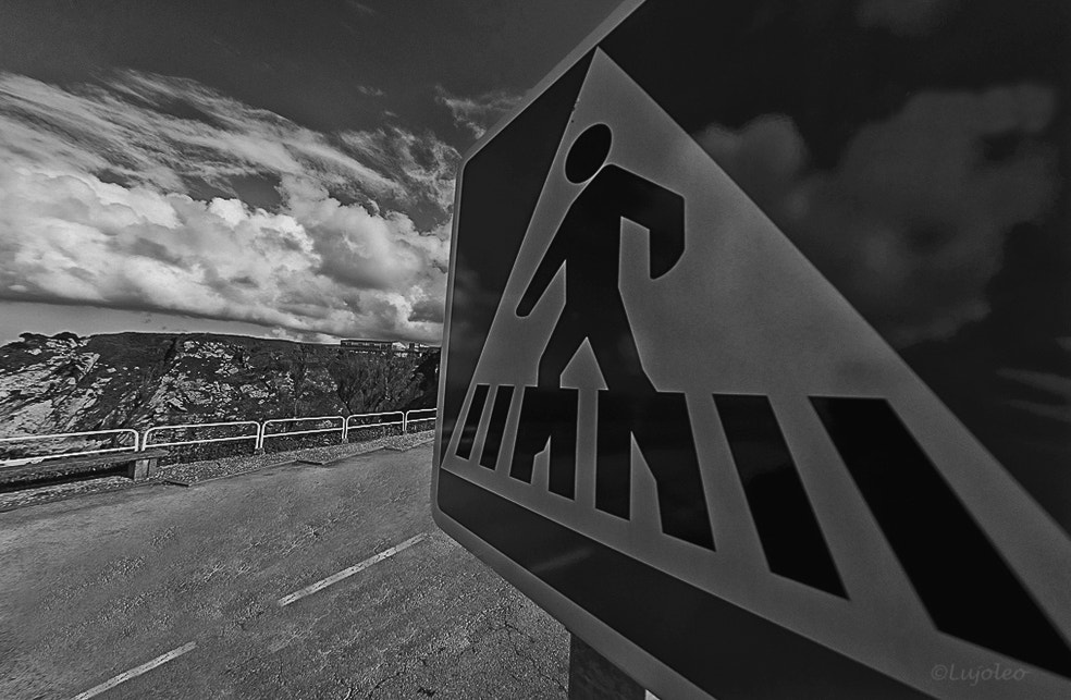 Photograph Crossing the Road by Luis Cabal on 500px