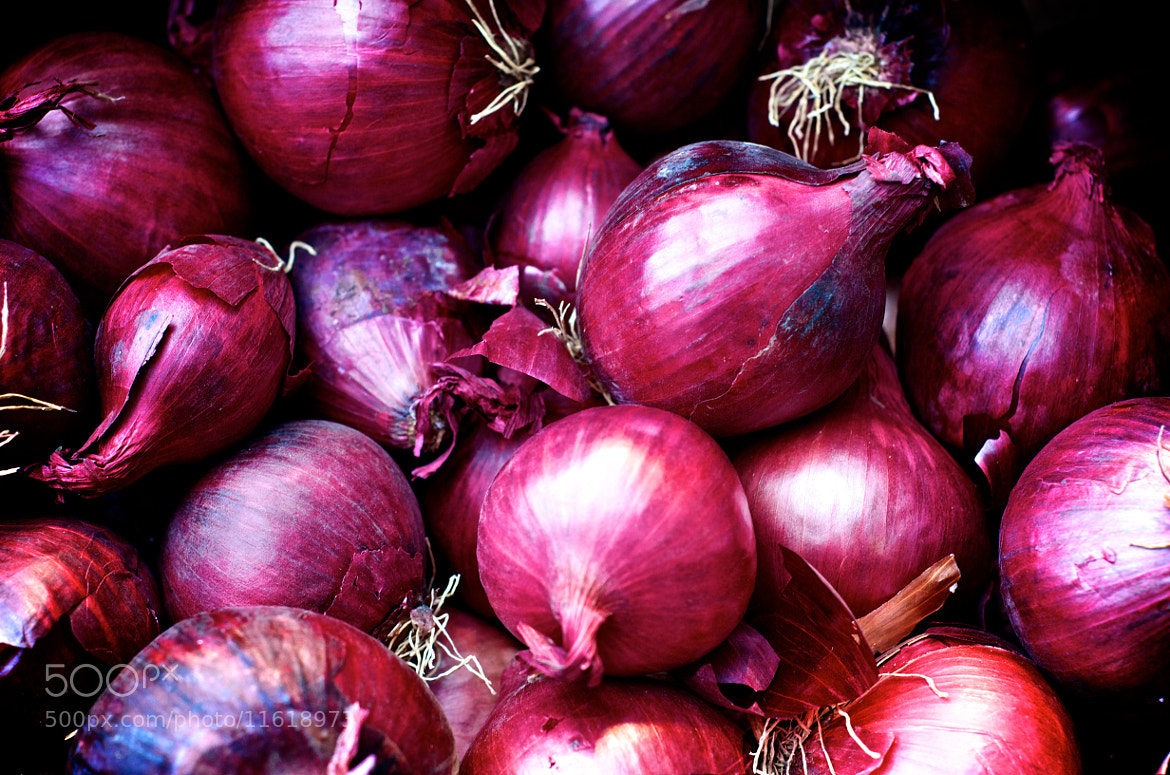 Photograph Red onions by Wilfried Schreder on 500px