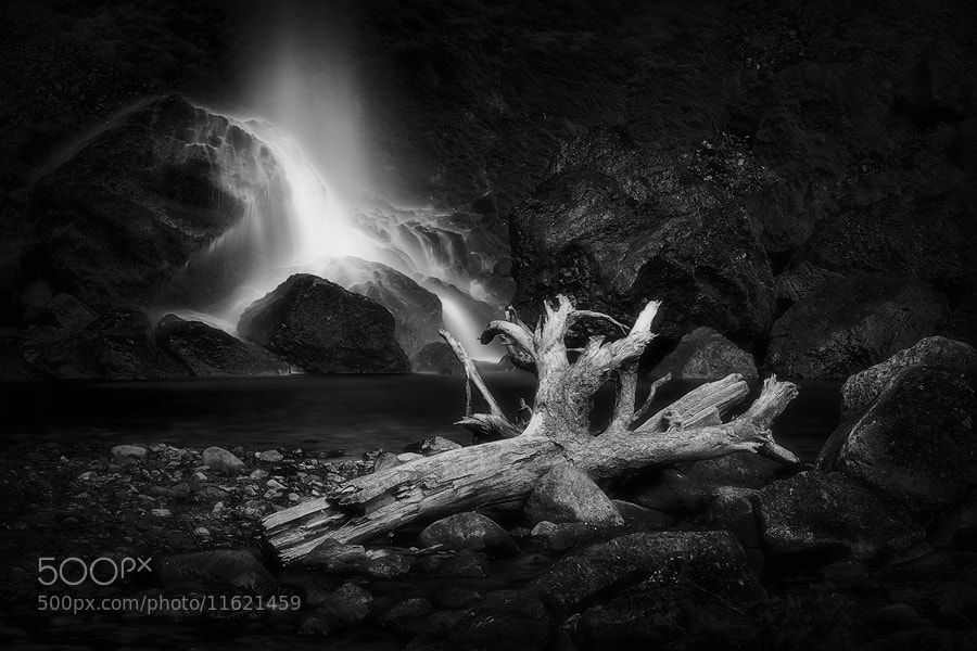 Photograph Drink to the Dead by Tula Top on 500px