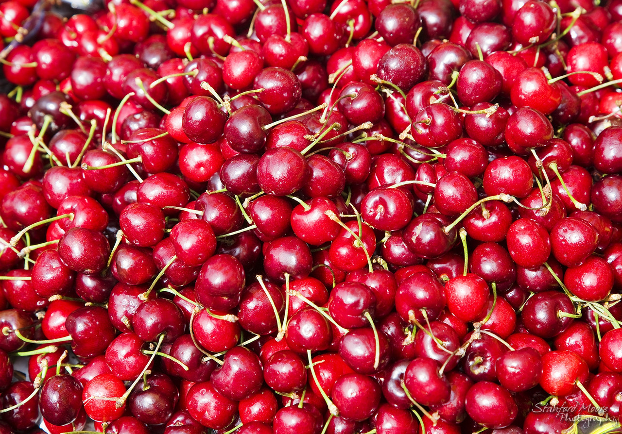 Photograph Cherries by Stanford  Moore on 500px